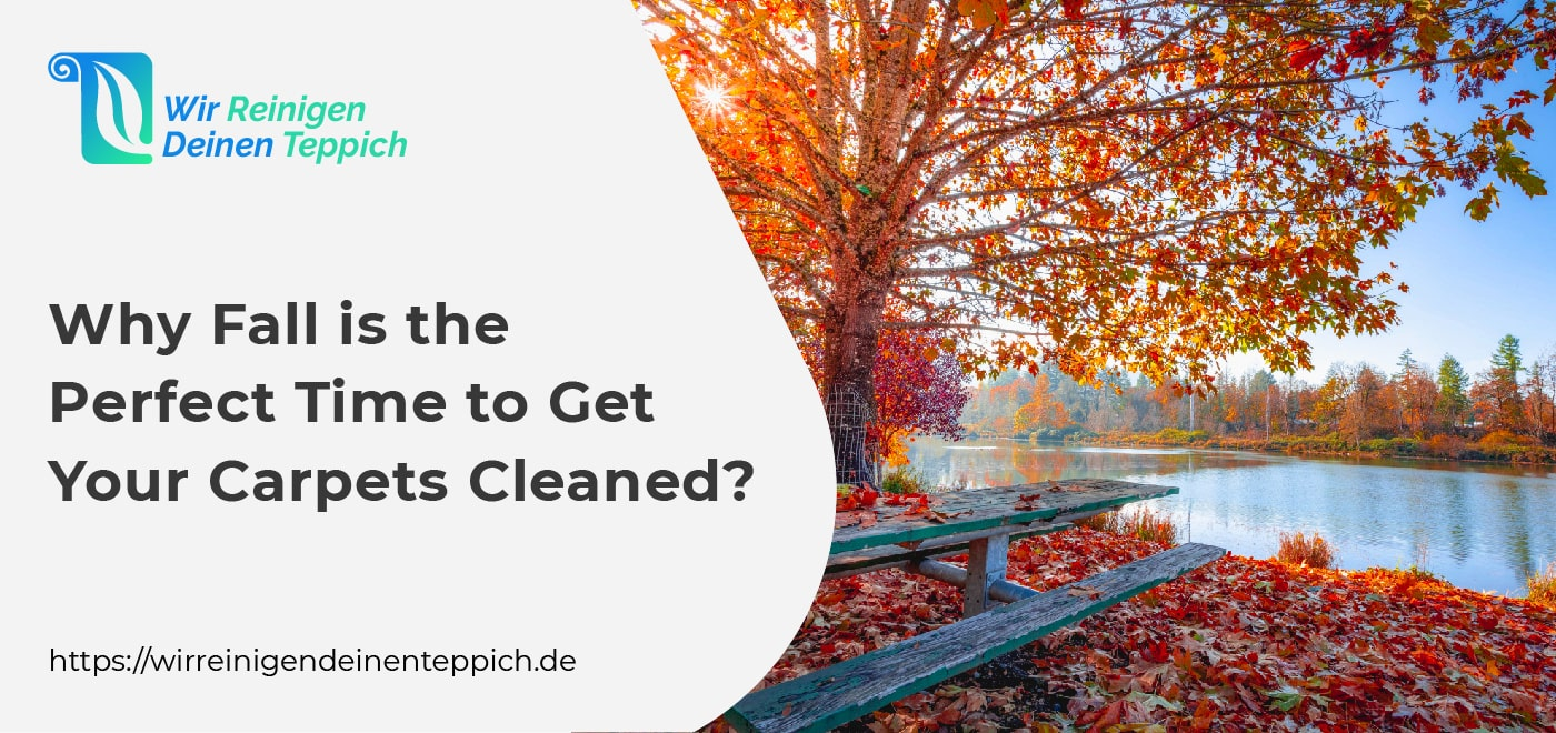 Carpet Cleaning during Fall