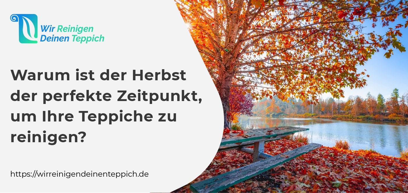 Teppichreinigung im Herbst