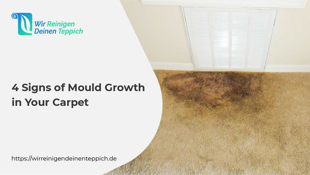 Signs of Mould growth
