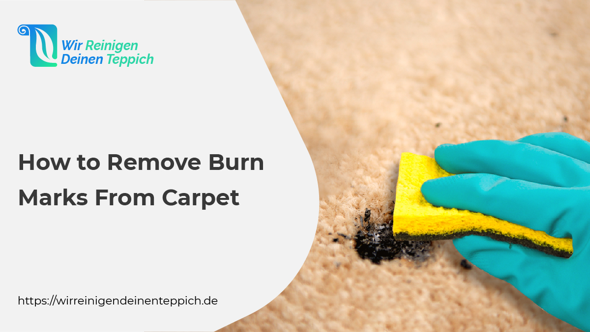 remove burn marks from carpet