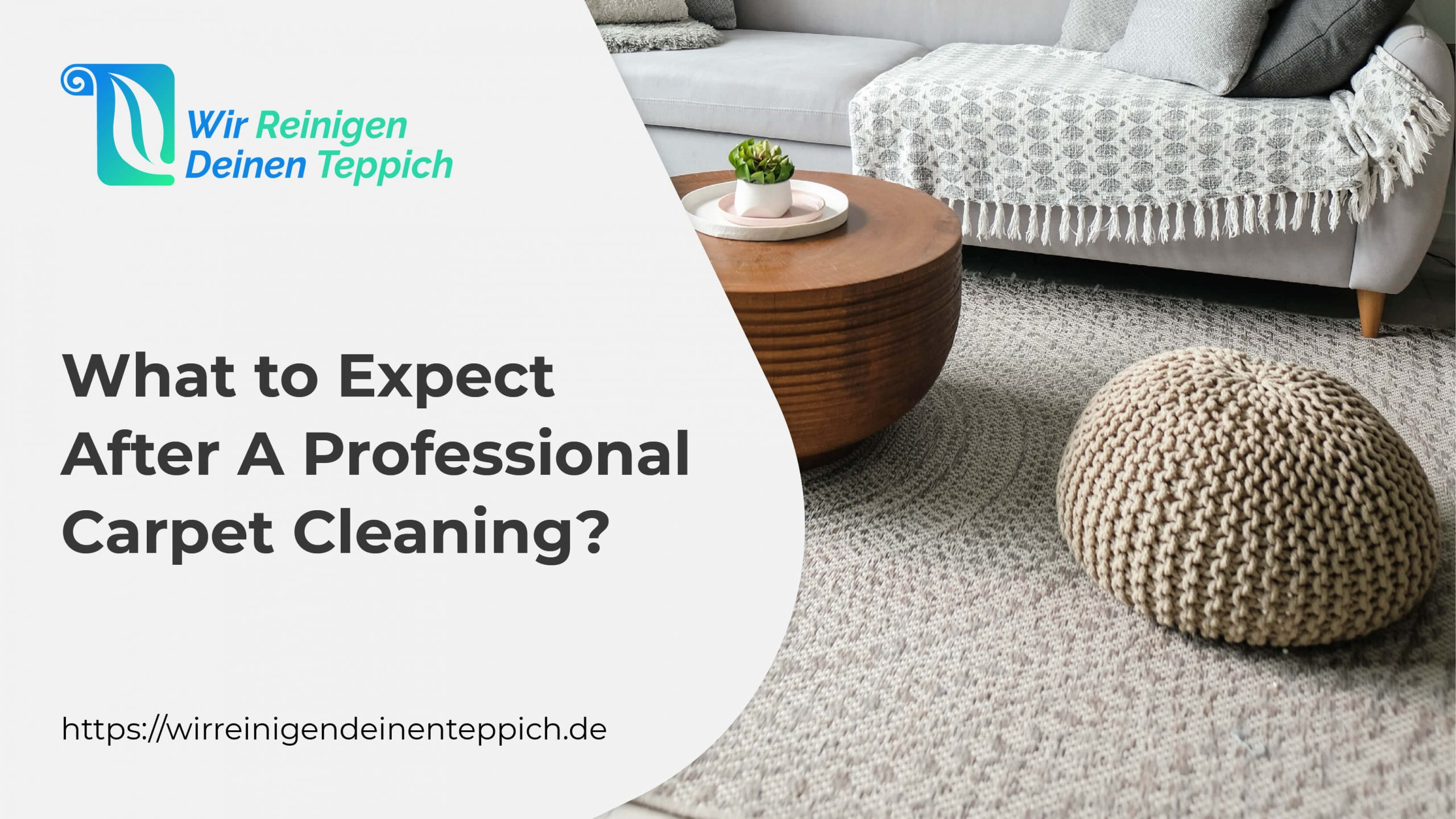 What to Expect After a Professional Carpet Cleaning